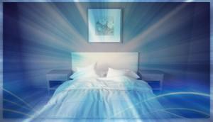 Punaises de lit, comment s'en débarrasser ?