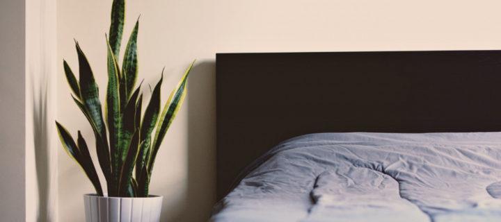 Astuce déco : Changer de tête de lit pour donner du renouveau à une chambre