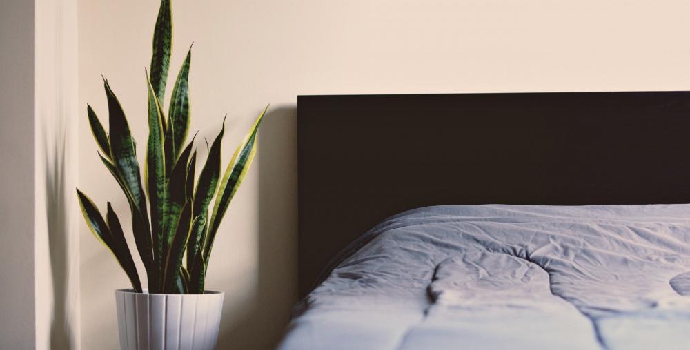 Il existe différents types de tête de lit, à vous de choisir...